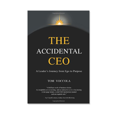 the accidental ceo